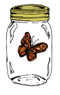 Butterfly in a Mayonnaise Jar